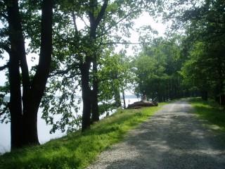 Hráz rybníka Rožmberk