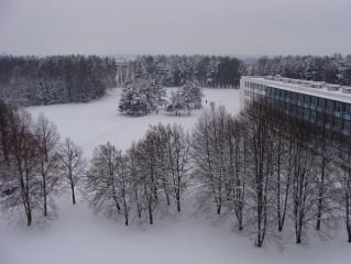 Zima v lázeňském parku