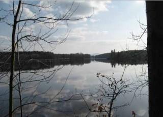 Rybník  Nový lipnický - Podřezaný