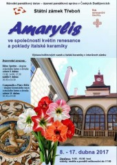 Amarylis na zámku v Třeboni