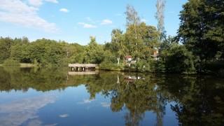Rybník Zadní Kouty