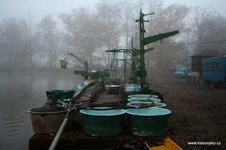 Fotogalerie výlovu rybníka Bošilec 2005