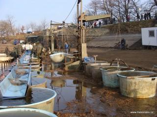 Na práci rybářů při výlovu přihlíží z hráze rybníka řada diváků.