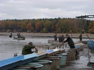 Snímek zachycuje poslední přípravy před zátahem: napouštění kádí, do kterých se bude dávat tříděná ryba.