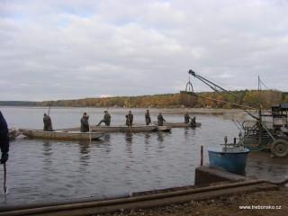 Rybáři na loďkách plaší rybu.