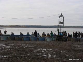 Na třídičce dochází k třídění (tzv. brakování) ryby.