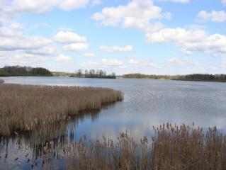Jeden z menších třeboňských rybníků