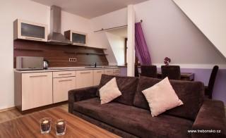 Apartmán Na Seníku - fialový