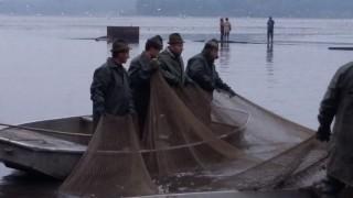 Třeboňští rybáři zatahují síť - detail
