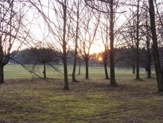 Třeboň - lázeňský park v zimě