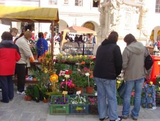 Květinový trh