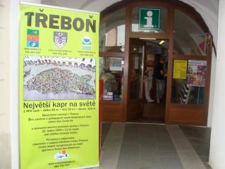 Největší kapr v Třeboni, na Třeboňsku...