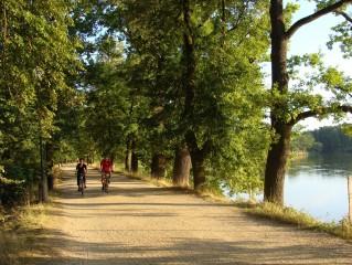 Cyklisté na Třeboňsku