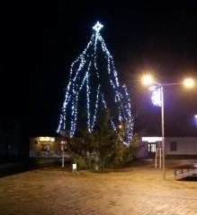 Vánoční strom v Suchdole n. L.