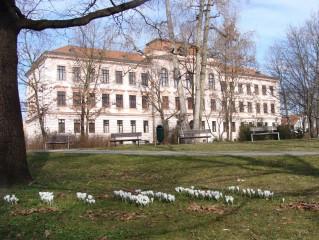Jaro v Třeboni