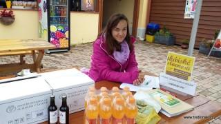 Cestou třeboňských pěšáků aneb nedělní cyklistický výlet k Rožmberku:  registrace