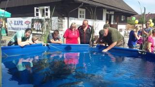 Výstava ryb na Sádkách Rybářství