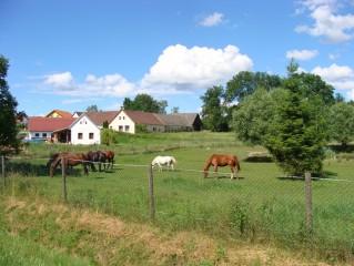 Možnost jízdy na koní
