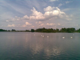 Rybník na Třeboňsku