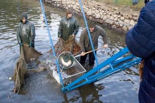 Studentí třeboňské rybářské školy v akci