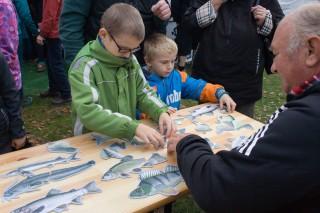 Skládání ryb