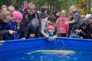 Výstava živých ryb; velký albín v bazénu!