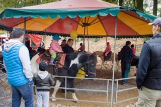 Atrakce pro děti, jízda na koni
