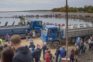Nakládání tříděné ryby a odvoz na sádky