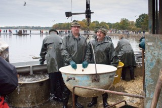 A rybáři? Jsou v akci po celý den!