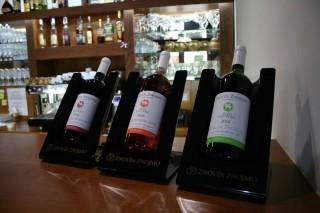 Svatomartinská vína (2016)