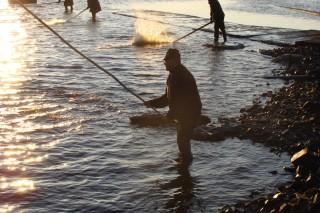 Plašení ryby při výlovu
