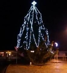 Vánoční strom v Suchdole