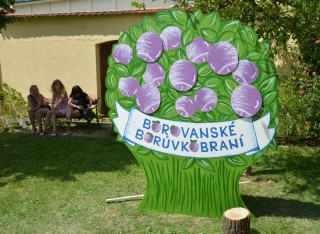 14. a 15. července - Borovanské borůvkobraní