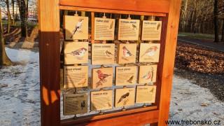 Rozeznáme ptáky vyskytující se na Třeboňsku?