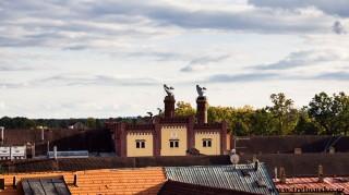 Pohled z věže Staré radnice