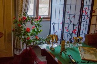 Zámek Třeboň a výstava amarylis - fotografie 2018