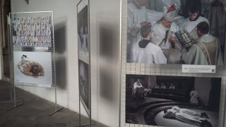 Výstava ČaV v Třeboni