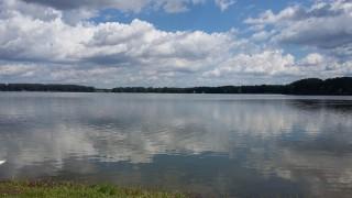 Pěší exkurze po hrázích rybníků Svět a Opatovický