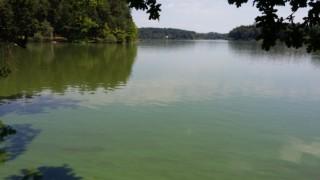 Rybník Holná