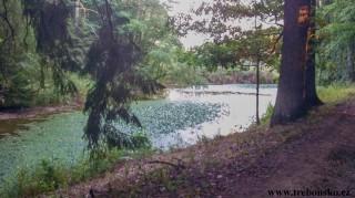 Staré jezero  Výtopa