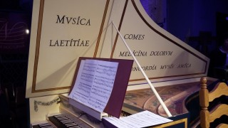 Festival Třeboňská nocturna: Abonentní koncerty  2018 / 2019