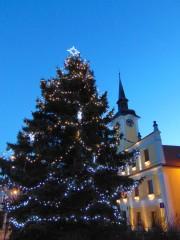 Vánoční strom v Lomnici nad Lužnicí