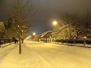 Zima v Třeboni