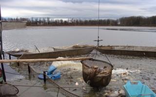 Proč se právě Třeboňsko stalo rybníkářskou velmocí? - článek