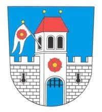 Město Borovany